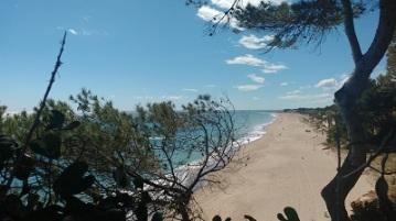 playas inmensas2